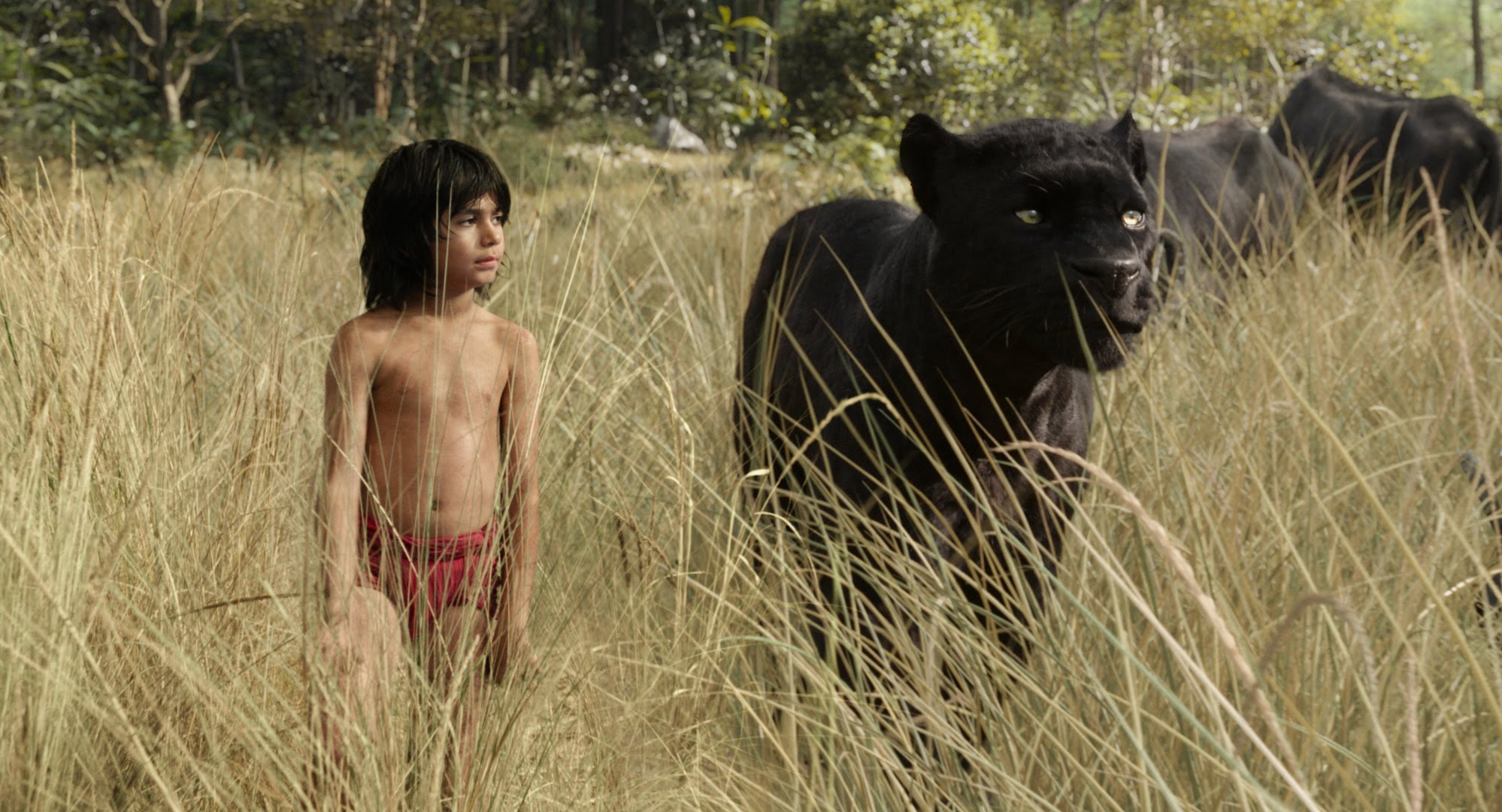 First Thoughts: 'The Jungle Book' Trailer